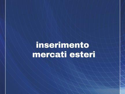 INTERNAZIONALIZZAZIONE Inserimento Mercati Paesi Esteri